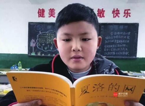 嘉鱼11岁小学生荣获全国征文奖