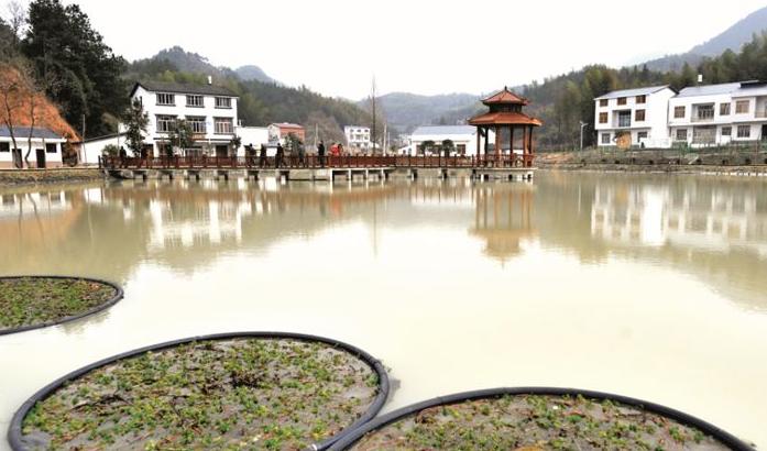 """通城县挖掘""""红色元素""""  加快发展乡村旅游"""