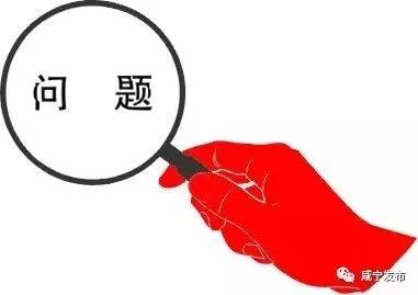 成效初显!咸宁市首轮巡察发现违纪违规问题线索409件!